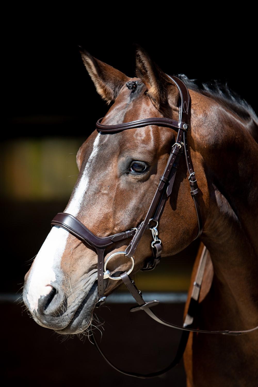 Harry´s Horse Trense Luxe mit Schwedisches Reithalfter