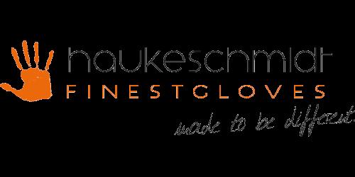 logo-haukeschmidt-2-500-250